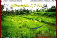 FOR SALE Affordable PROPERTY 27,000 m2 LAND IN UBUD TJUB469