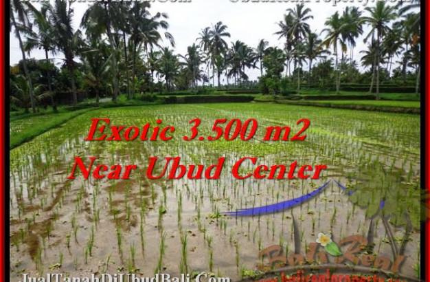 Exotic UBUD 3,500 m2 LAND FOR SALE TJUB477