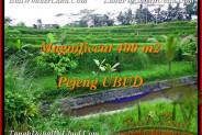 Exotic LAND SALE IN Ubud Pejeng BALI TJUB483