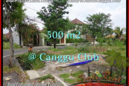 FOR SALE Magnificent PROPERTY 500 m2 LAND IN CANGGU TJCG176