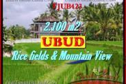 Beautiful PROPERTY LAND FOR SALE IN UBUD TJUB423