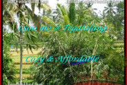 Affordable PROPERTY LAND FOR SALE IN UBUD TJUB489