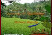 Exotic PROPERTY LAND IN UBUD FOR SALE TJUB490