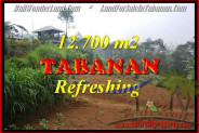 Exotic PROPERTY 12,700 m2 LAND FOR SALE IN Sukasada TJTB167