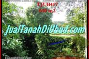 Exotic 650 m2 LAND SALE IN UBUD TJUB417