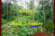 FOR SALE 600 m2 LAND IN UBUD TJUB493