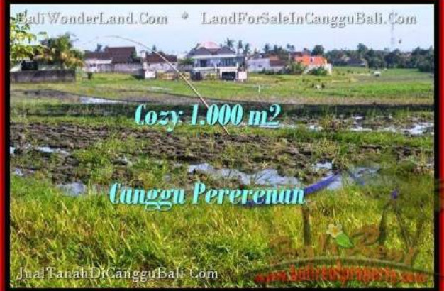 Magnificent LAND SALE IN Canggu Kayutulang  TJCG177