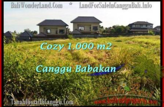 Magnificent LAND SALE IN Canggu Batu Bolong  TJCG178