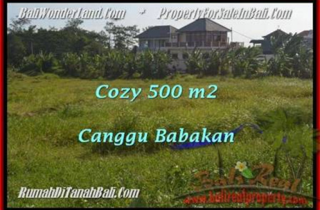 Magnificent LAND SALE IN Canggu Batu Bolong  TJCG179