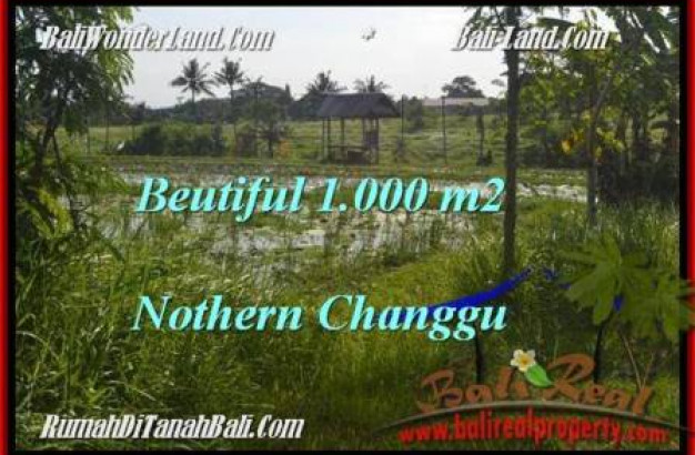 Magnificent LAND SALE IN Canggu Batu Bolong  TJCG180