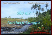 Magnificent PROPERTY Canggu Pererenan BALI LAND FOR SALE TJCG181