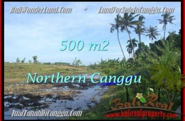 Magnificent PROPERTY Canggu Pererenan BALI LAND FOR SALE TJCG181