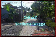 Canggu Pererenan BALI 250 m2 LAND FOR SALE TJCG182