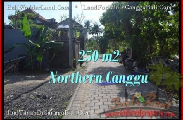 Beautiful PROPERTY LAND SALE IN Canggu Pererenan BALI TJCG182