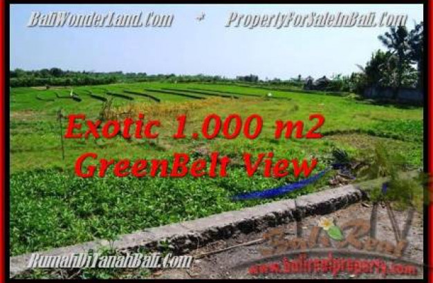Exotic 1,000 m2 LAND FOR SALE IN CANGGU TJCG184