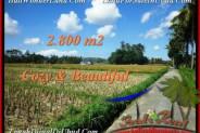 Beautiful 2,800 m2 LAND IN UBUD BALI FOR SALE TJUB498