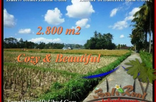 Magnificent UBUD BALI 2,800 m2 LAND FOR SALE TJUB498