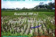 Exotic PROPERTY 300 m2 LAND SALE IN UBUD BALI TJUB500
