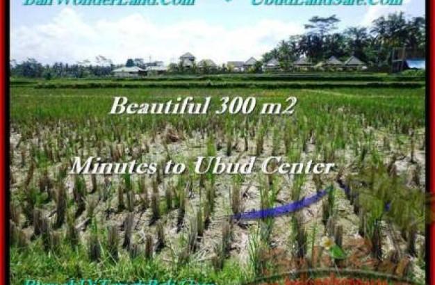 Magnificent PROPERTY 300 m2 LAND IN Sentral Ubud FOR SALE TJUB500