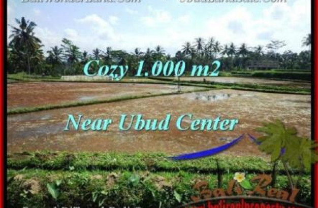 Magnificent PROPERTY 1,000 m2 LAND IN Sentral Ubud FOR SALE TJUB501