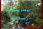 FOR SALE Magnificent PROPERTY 1,910 m2 LAND IN UBUD BALI TJUB504