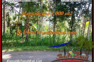 LAND FOR SALE IN Ubud Payangan BALI TJUB506