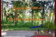 LAND FOR SALE IN Ubud Payangan BALI TJUB506