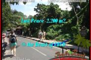 FOR SALE Exotic LAND IN Sentral Ubud BALI TJUB509