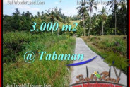 Magnificent PROPERTY LAND FOR SALE IN TABANAN TJTB205