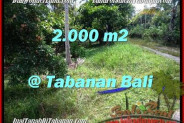 Beautiful PROPERTY LAND IN TABANAN FOR SALE TJTB206