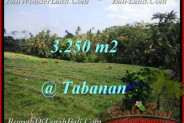 Affordable 3,250 m2 LAND SALE IN TABANAN TJTB208