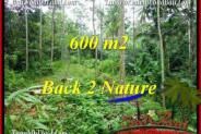 Exotic 600 m2 LAND SALE IN UBUD BALI TJUB493