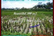Magnificent PROPERTY Sentral Ubud 300 m2 LAND FOR SALE TJUB500
