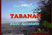 Affordable LAND IN Tabanan Selemadeg BALI FOR SALE TJTB156