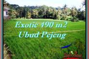 Exotic PROPERTY UBUD LAND FOR SALE TJUB512