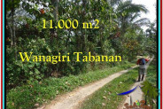 Magnificent PROPERTY 11.000 m2 LAND SALE IN TABANAN BALI TJTB213
