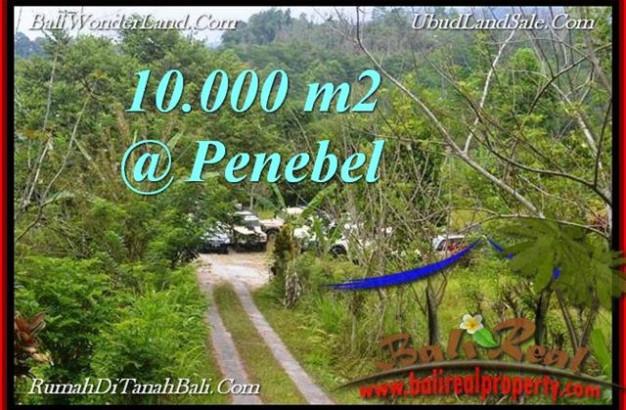 FOR SALE Affordable PROPERTY LAND IN  TABANAN Jatiluwih BALI TJTB214
