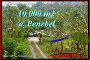 Beautiful LAND FOR SALE IN  TABANAN TJTB214