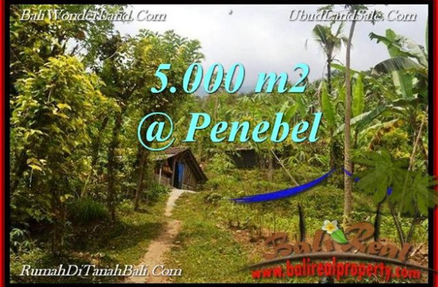 Magnificent PROPERTY LAND IN TABANAN FOR SALE TJTB215