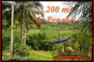 Beautiful PROPERTY LAND IN TABANAN FOR SALE TJTB216