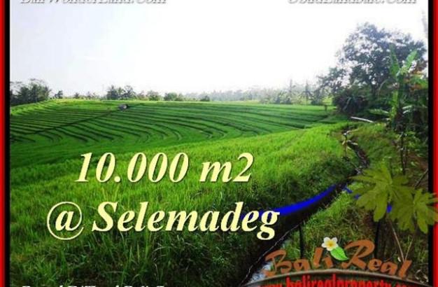 TABANAN 10,000 m2 LAND FOR SALE TJTB217