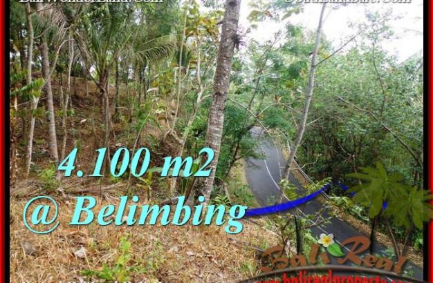 Affordable 4,100 m2 LAND SALE IN TABANAN TJTB218