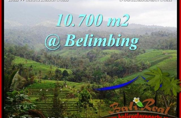 FOR SALE Exotic 10,700 m2 LAND IN TABANAN TJTB219