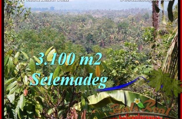 Beautiful 3,100 m2 LAND IN TABANAN BALI FOR SALE TJTB222