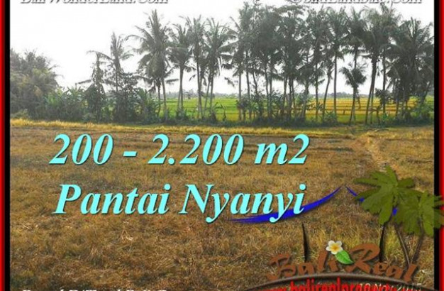 Exotic PROPERTY 2,200 m2 LAND SALE IN TABANAN BALI TJTB224