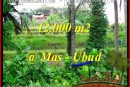 Affordable UBUD BALI 12,000 m2 LAND FOR SALE TJUB492