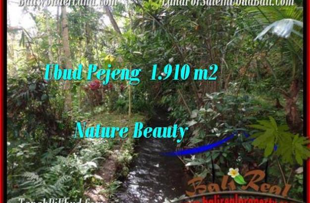 Magnificent PROPERTY Ubud Pejeng 1,910 m2 LAND FOR SALE TJUB504