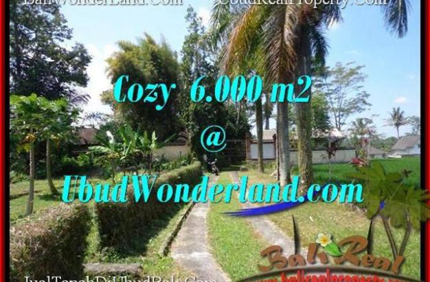 Magnificent PROPERTY Sentral Ubud 6,000 m2 LAND FOR SALE TJUB507