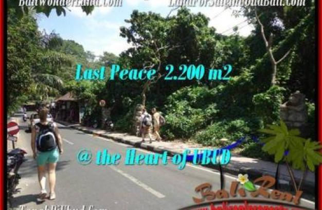 FOR SALE Affordable LAND IN Sentral Ubud BALI TJUB509