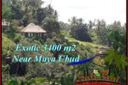 3,400 m2 LAND SALE IN UBUD TJUB514